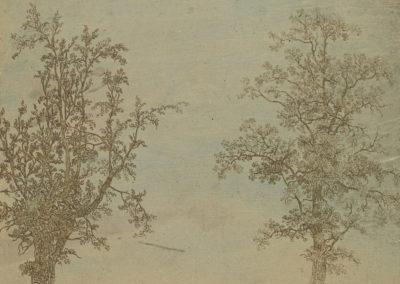 De twee bomen (een els en een es, ca 1627), ets in oplosmethode, collectie Rijksmuseum Amsterdam